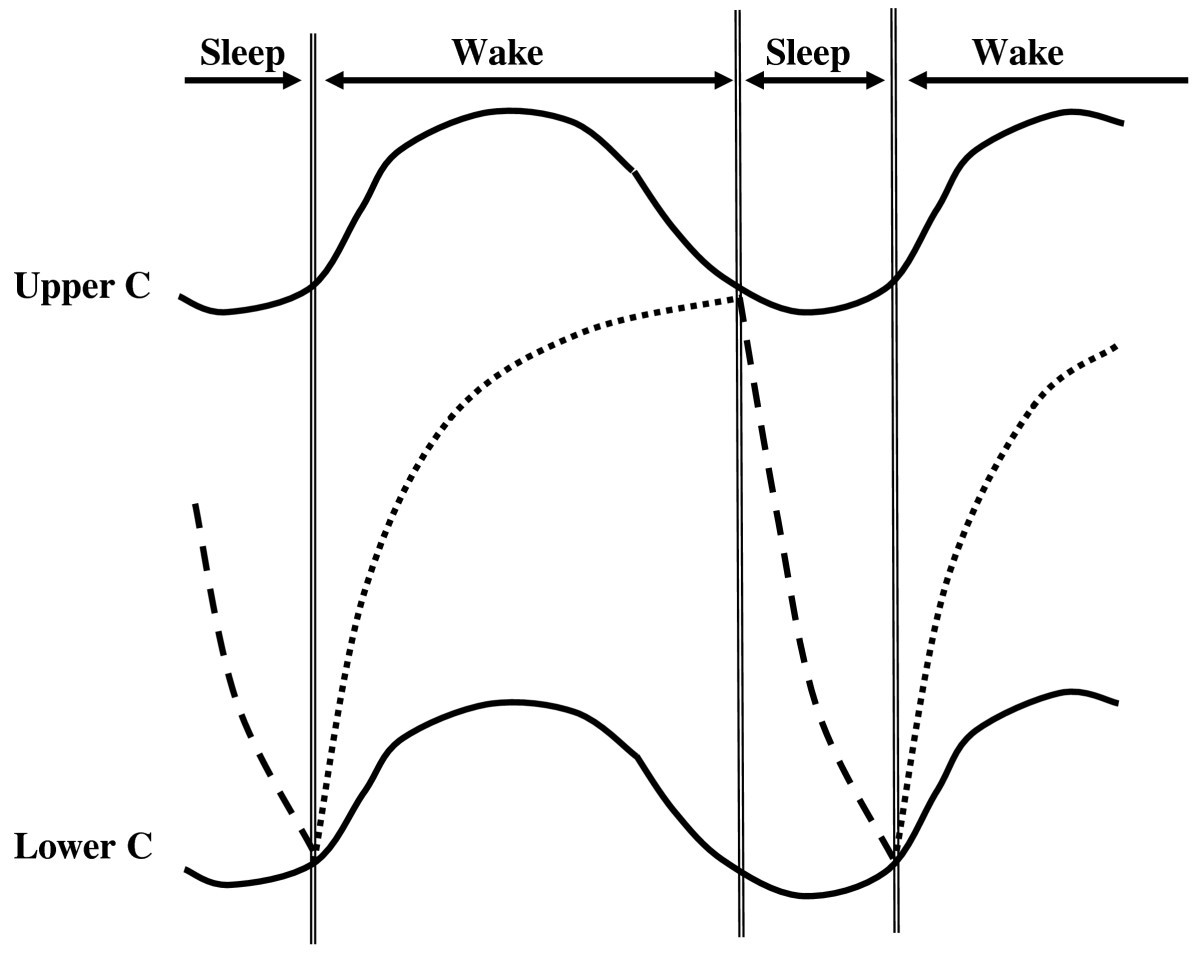 Daily Rhythms Of The Sleep Wake Cycle Journal Physiological Download A Free 31dayfullyfunctioning Evaluation Version Figure 2