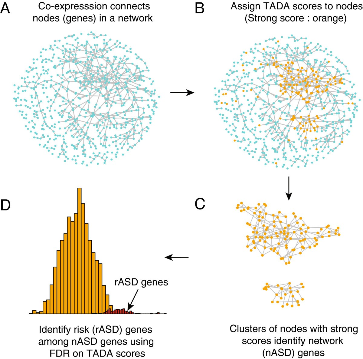 Autism Study Identifies Clear Gene >> Dawn A Framework To Identify Autism Genes And Subnetworks Using