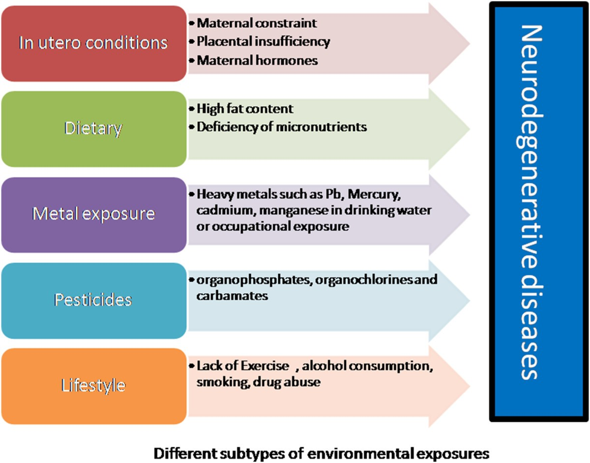 Role of early life exposure and environment on neurodegeneration ... 9f8b7aa1754