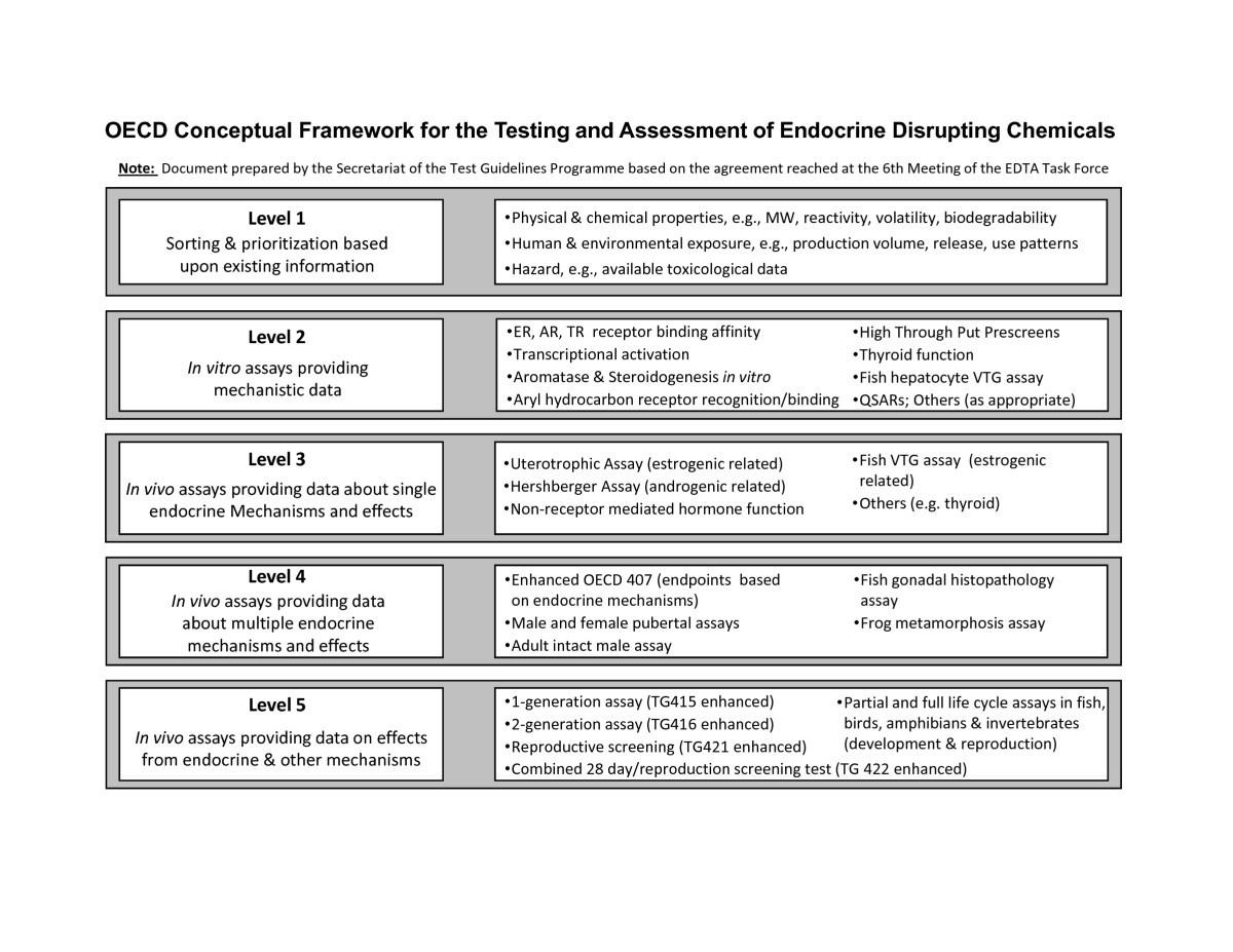 Endocrine Disruptor Screening Regulatory Perspectives And Needs