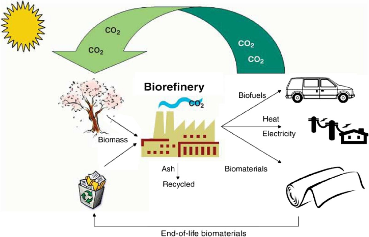 An Economic And Ecological Perspective Of Ethanol