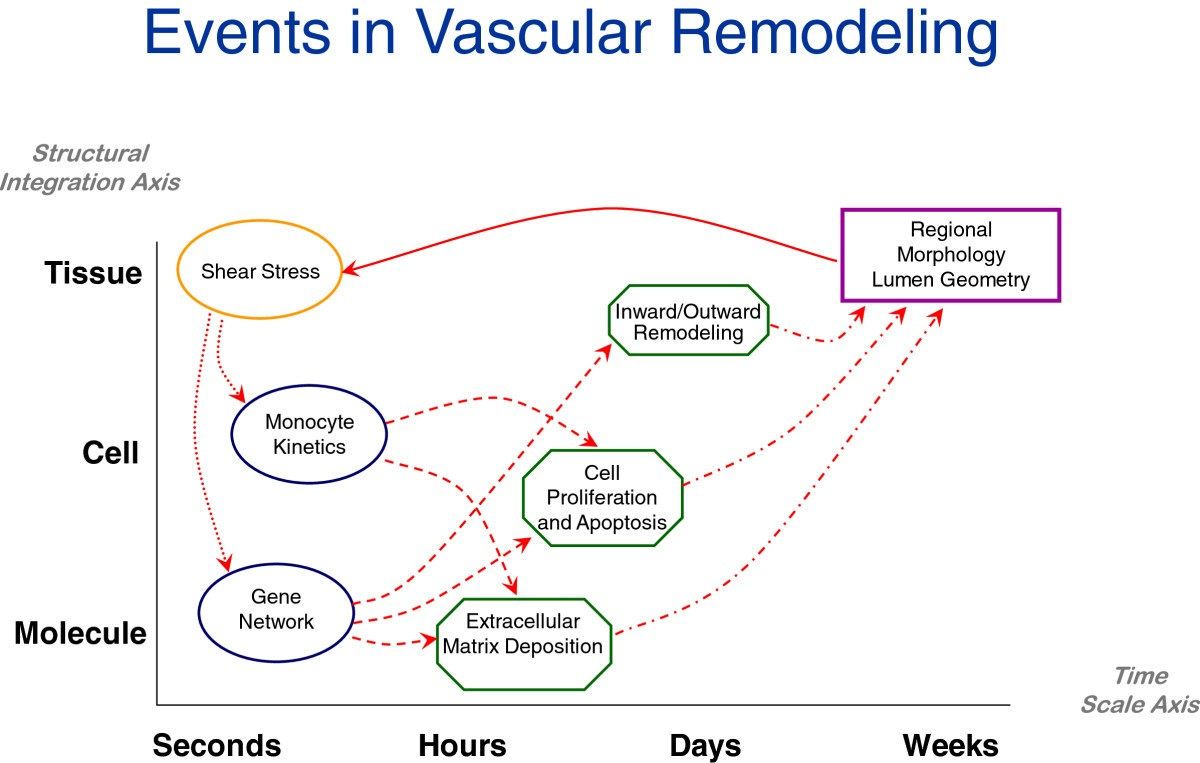 A Road Map For Computational Surgery Challenges And Opportunities Shear Moment Diagram Wikipedia The Free Encyclopedia Figure 7