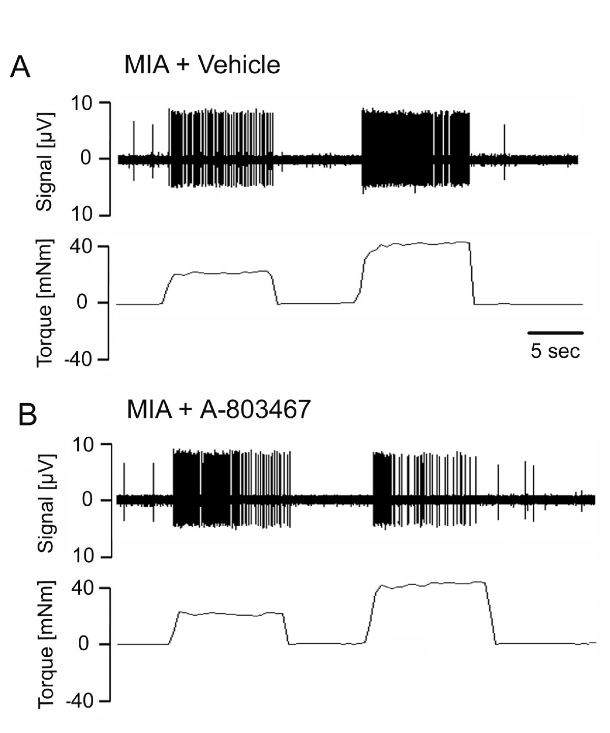 Involvement Of Nav 18 Sodium Ion Channels In The Transduction Figure1 Cell Phone Jammer Circuit Diagram Figure 1