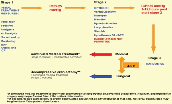 the rescueicp decompressive craniectomy trial critical care full