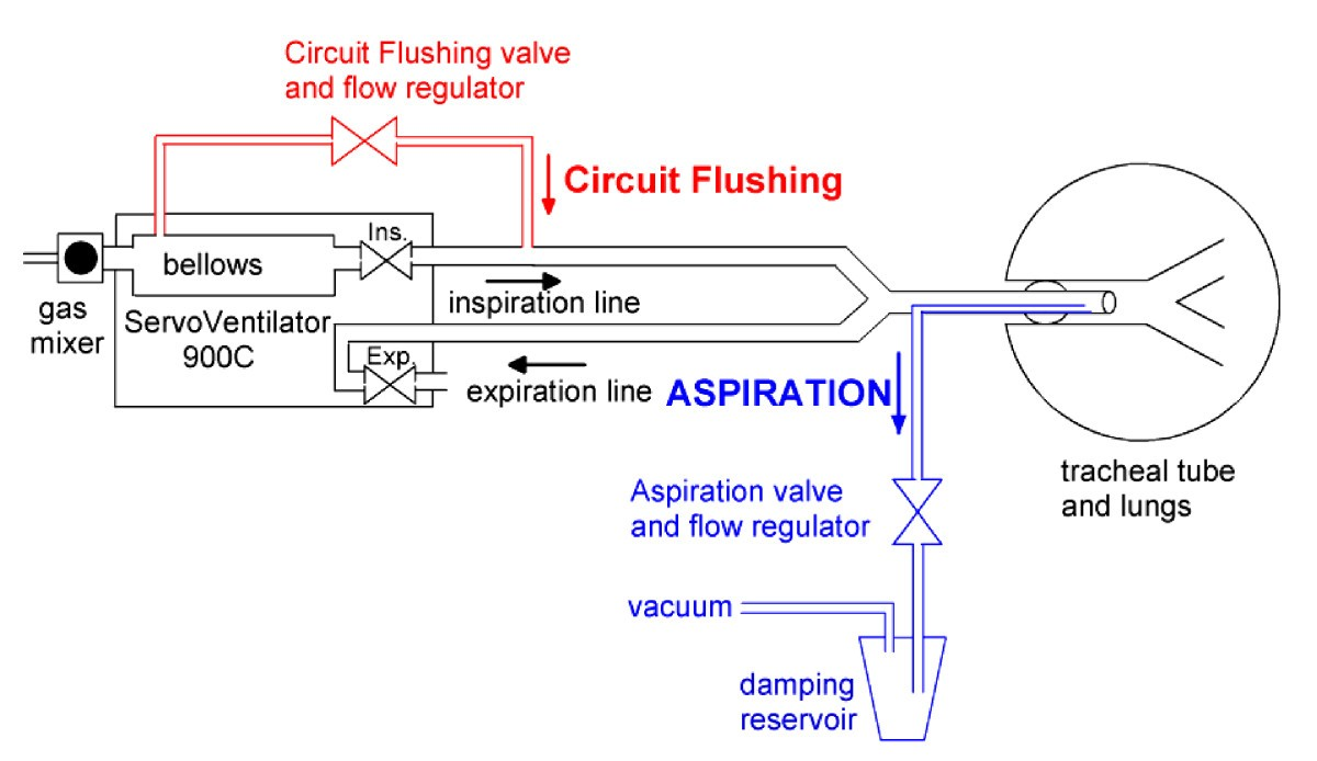 re inspiration of co2 from ventilator circuit effects of circuit