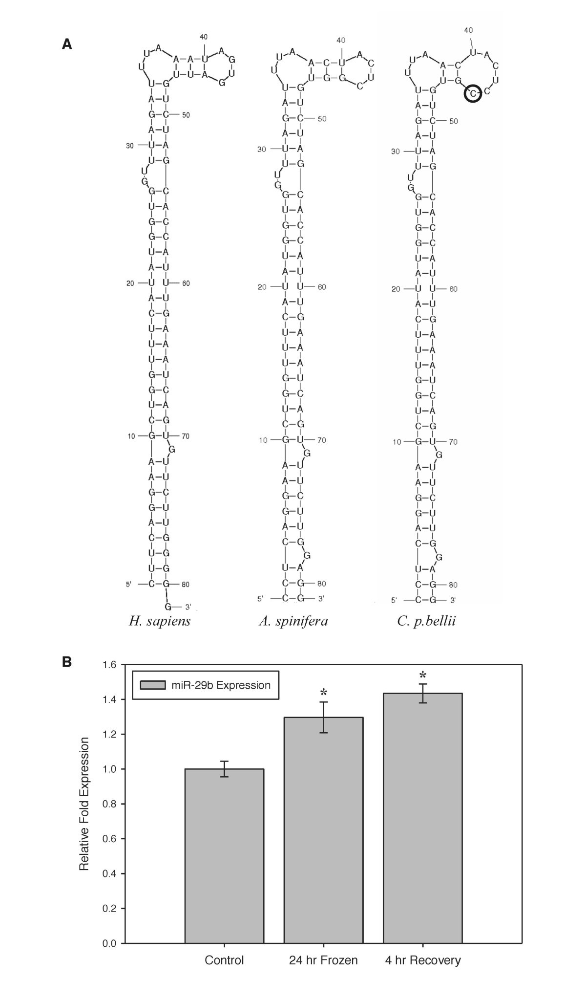 The Western Painted Turtle Genome A Model For Evolution Of Tc 90 Engine Compartment Diagram Figure 3