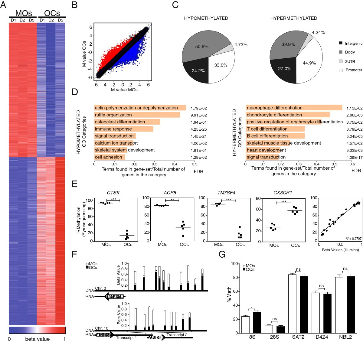 Pu1 Target Genes Undergo Tet2 Coupled Demethylation And Dnmt3b