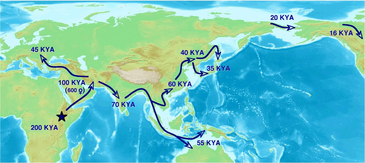 timing the first human migration into eastern asia journal of