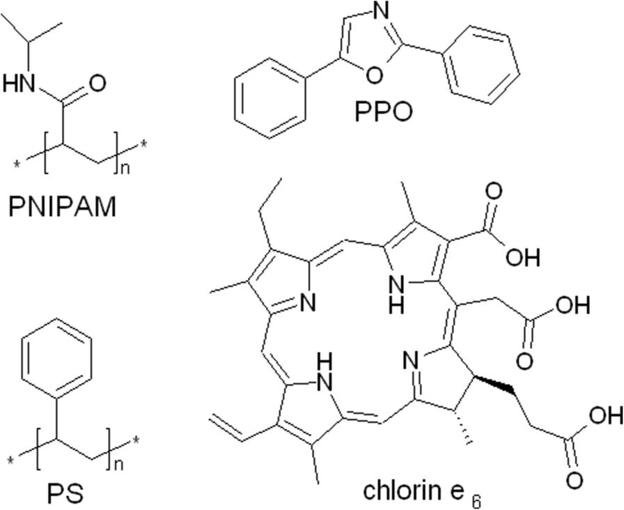 uptake of chlorin e6 photosensitizer by polystyrene diphenyloxazole Basic LAN Network Diagram fig 1