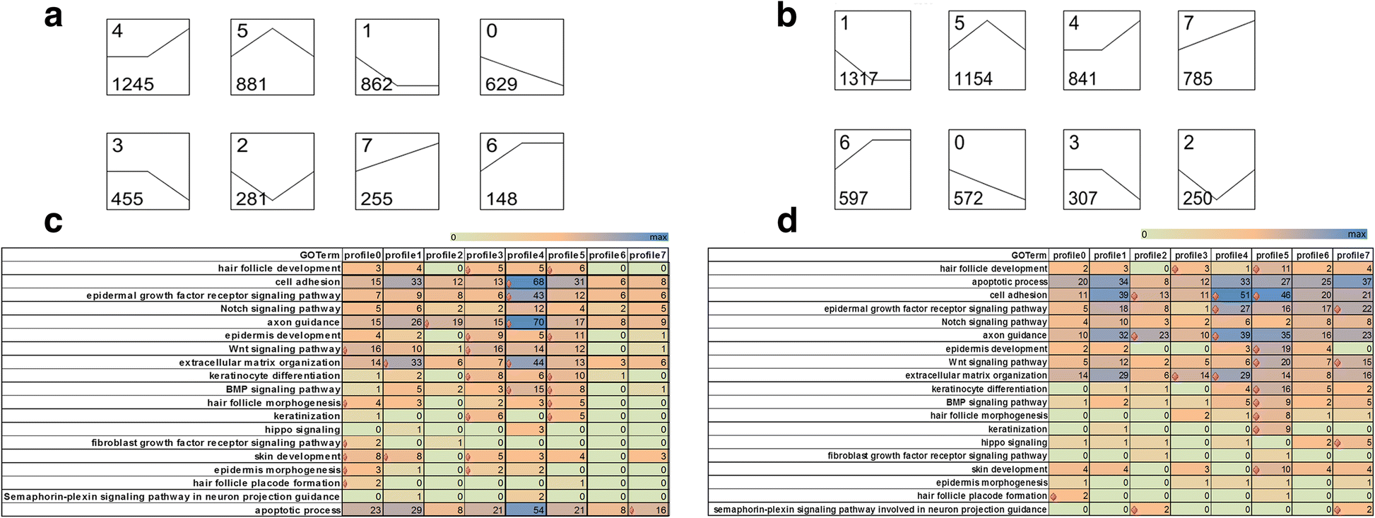 Dynamic Transcriptome Profiling Towards Understanding The Chicken Wing Diagram Have Primary Feathers Fig 2