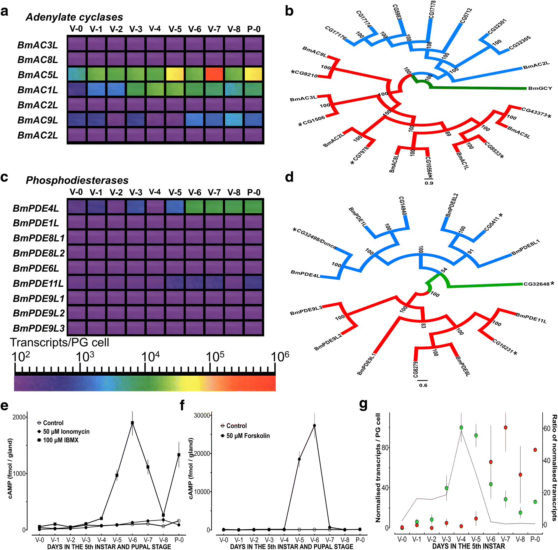 Refining A Steroidogenic Model An Analysis Of Rna Seq Datasets From The Free Encyclopedia Electronic Circuit Design Software Fig 3