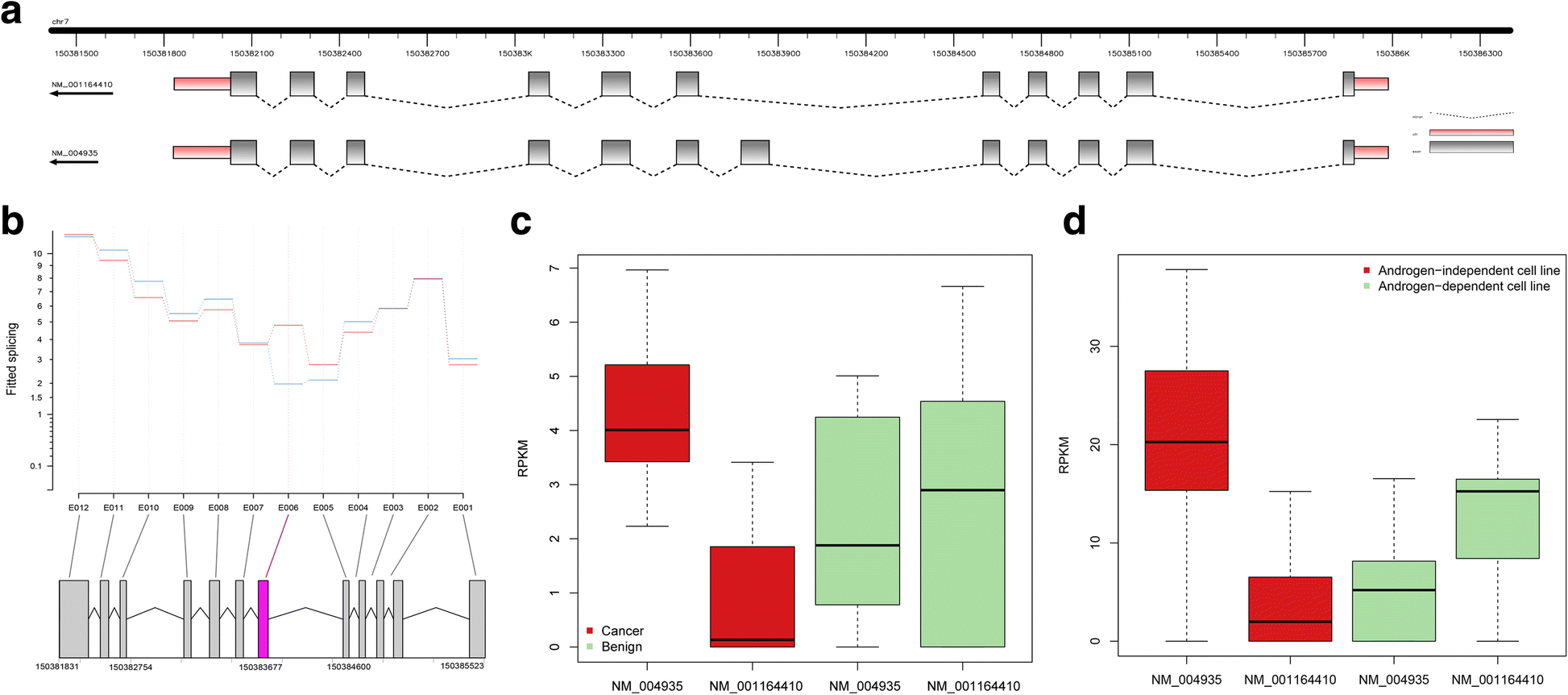 Characterization Of Kinase Gene Expression And Splicing Profile In
