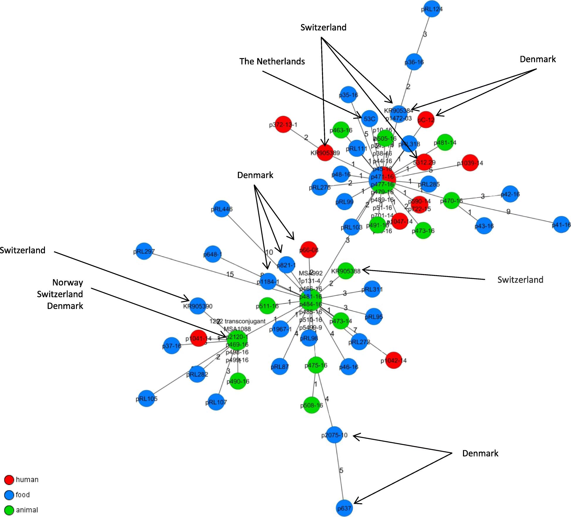 Whole genome analyses of CMY-2-producing Escherichia coli isolates ...