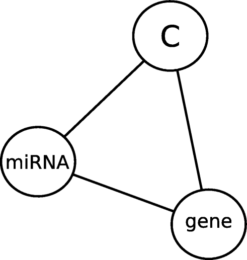 Revealing Post Transcriptional Micrornamrna Regulations In
