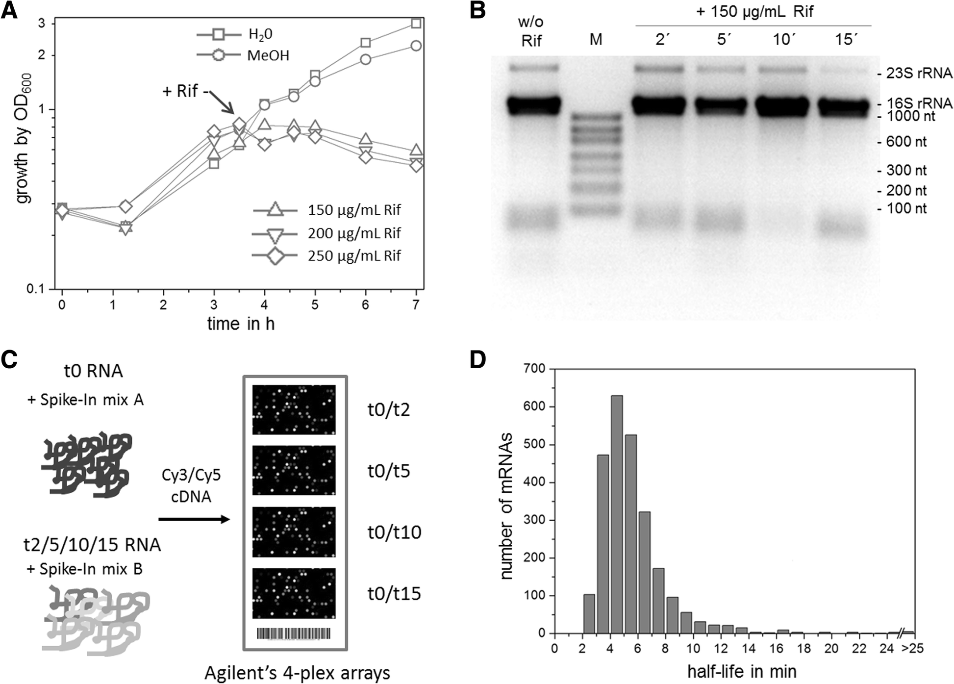 figure 1 Array - global mrna decay and 23s rrna fragmentation in  gluconobacter rh bmcgenomics biomedcentral com