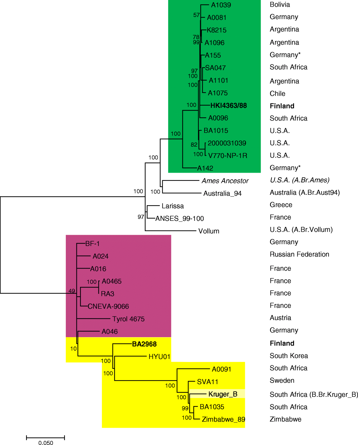 Genotyping And Phylogenetic Placement Of Bacillus Anthracis Isolates Png 11kb 26987d1392783649detachedgaragenopowergaragewiringpng Fig 2