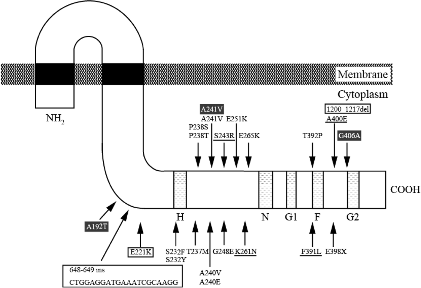 Dissemination And Genetic Analysis Of The Stealthy Vanb Gene Color Sensor Circuit Diagram Group Picture Image By Tag Fig 3 Schematic Representation