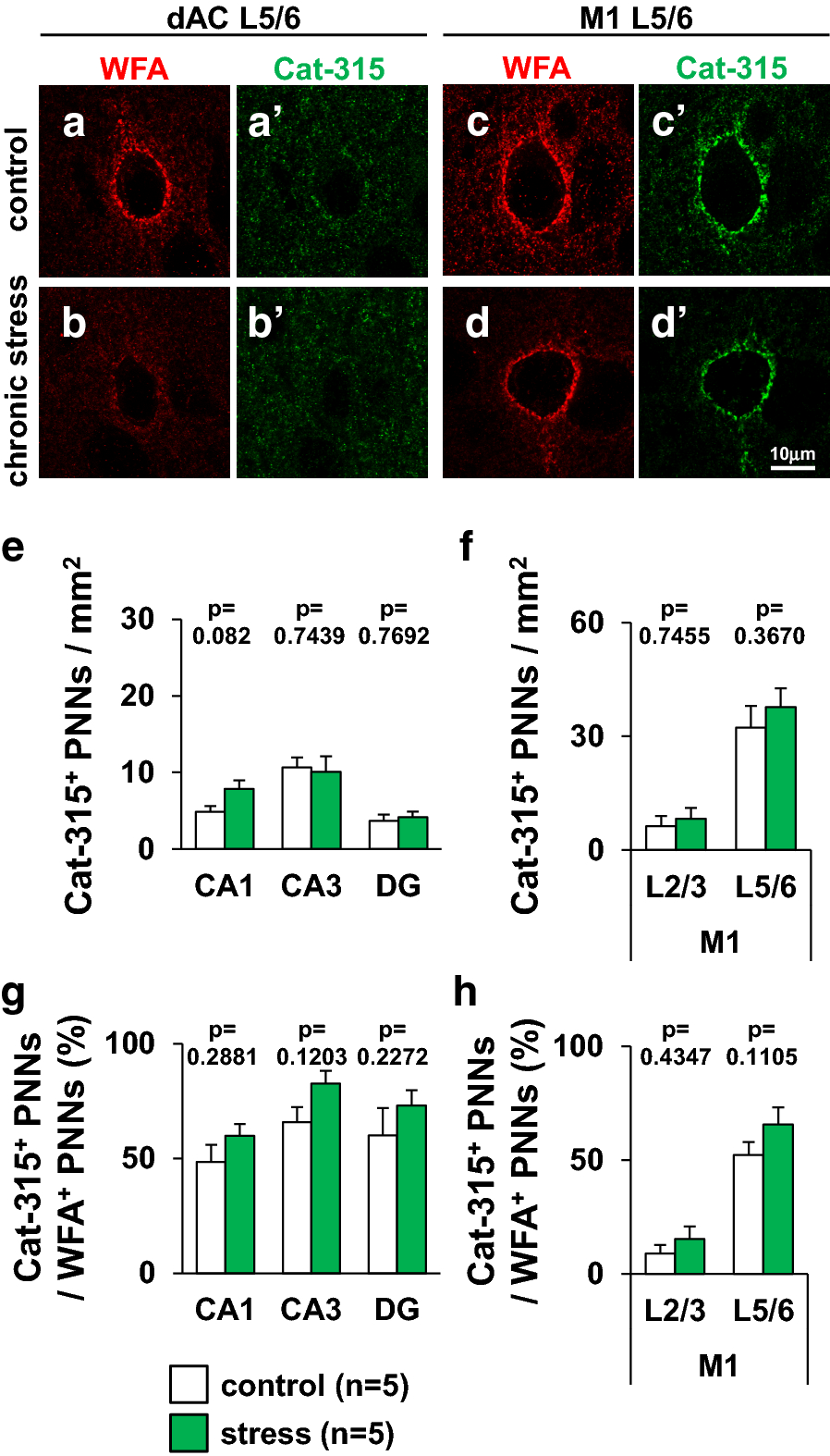 Juvenile Stress Induces Behavioral Change And Affects Perineuronal Instrument Air Dryer Symbol Additionally Relay Schematic In Fig 12