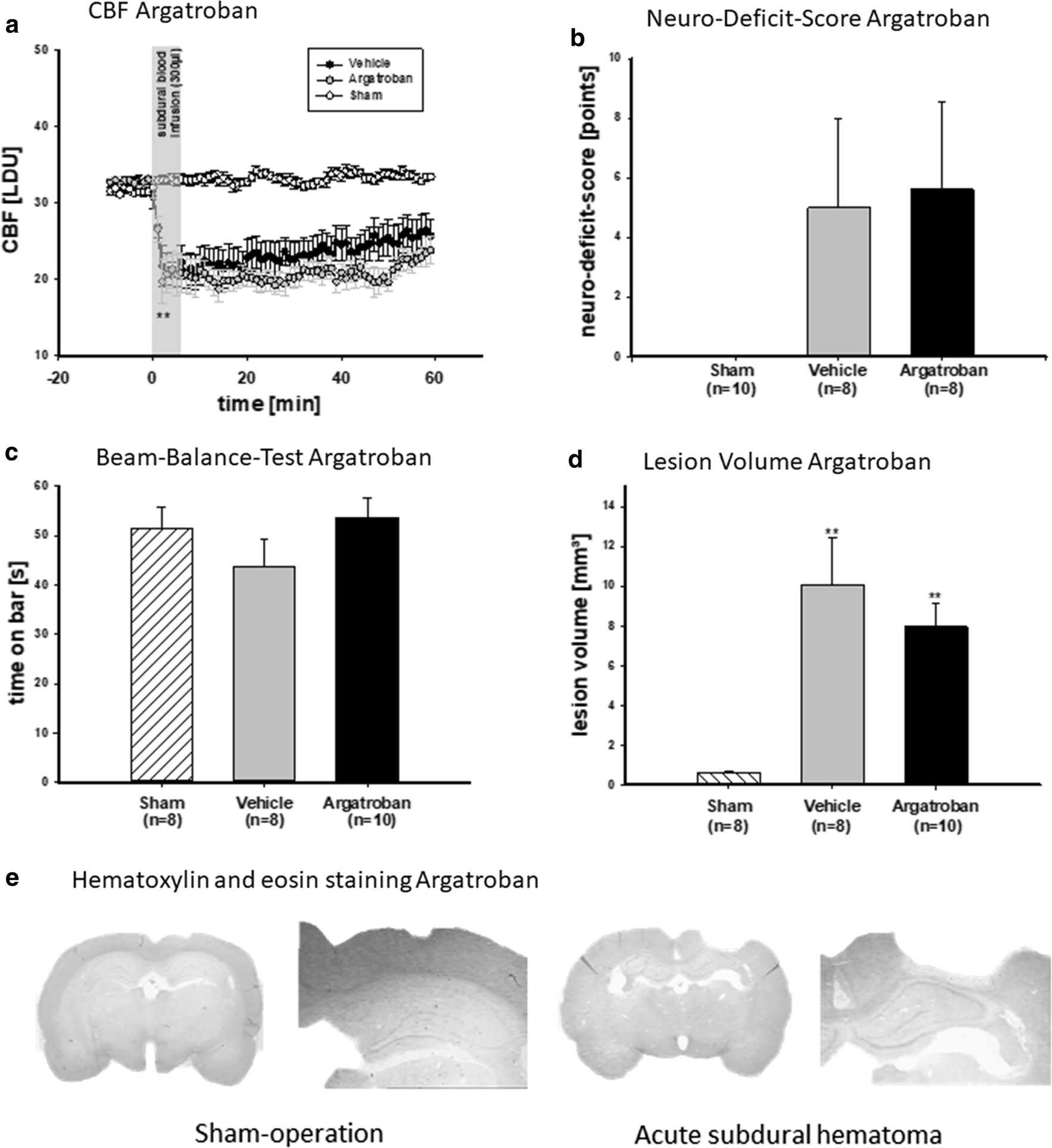 Thrombin contributes to the injury development and neurological