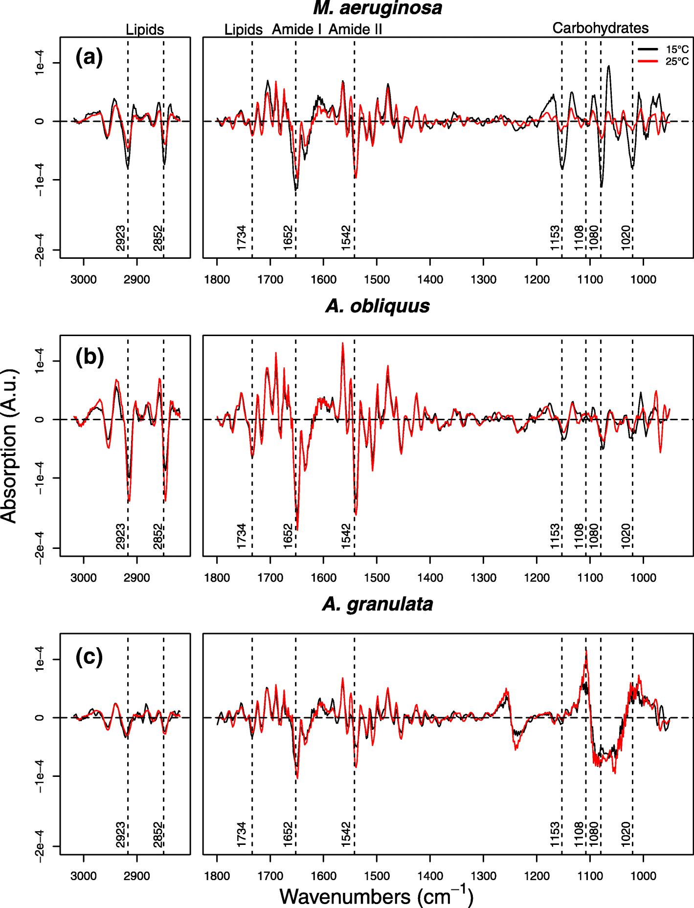 7535358da97ec Quantitative macromolecular patterns in phytoplankton communities ...