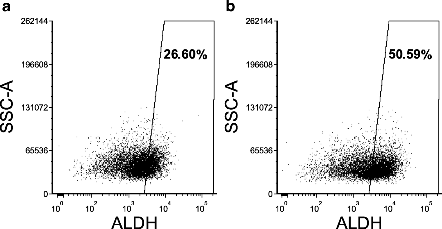 Aldh1a Inhibition Sensitizes Colon Cancer Cells To Chemotherapy How Build 12 Stage Neon Sequencer Ne 2 51 Fig 1