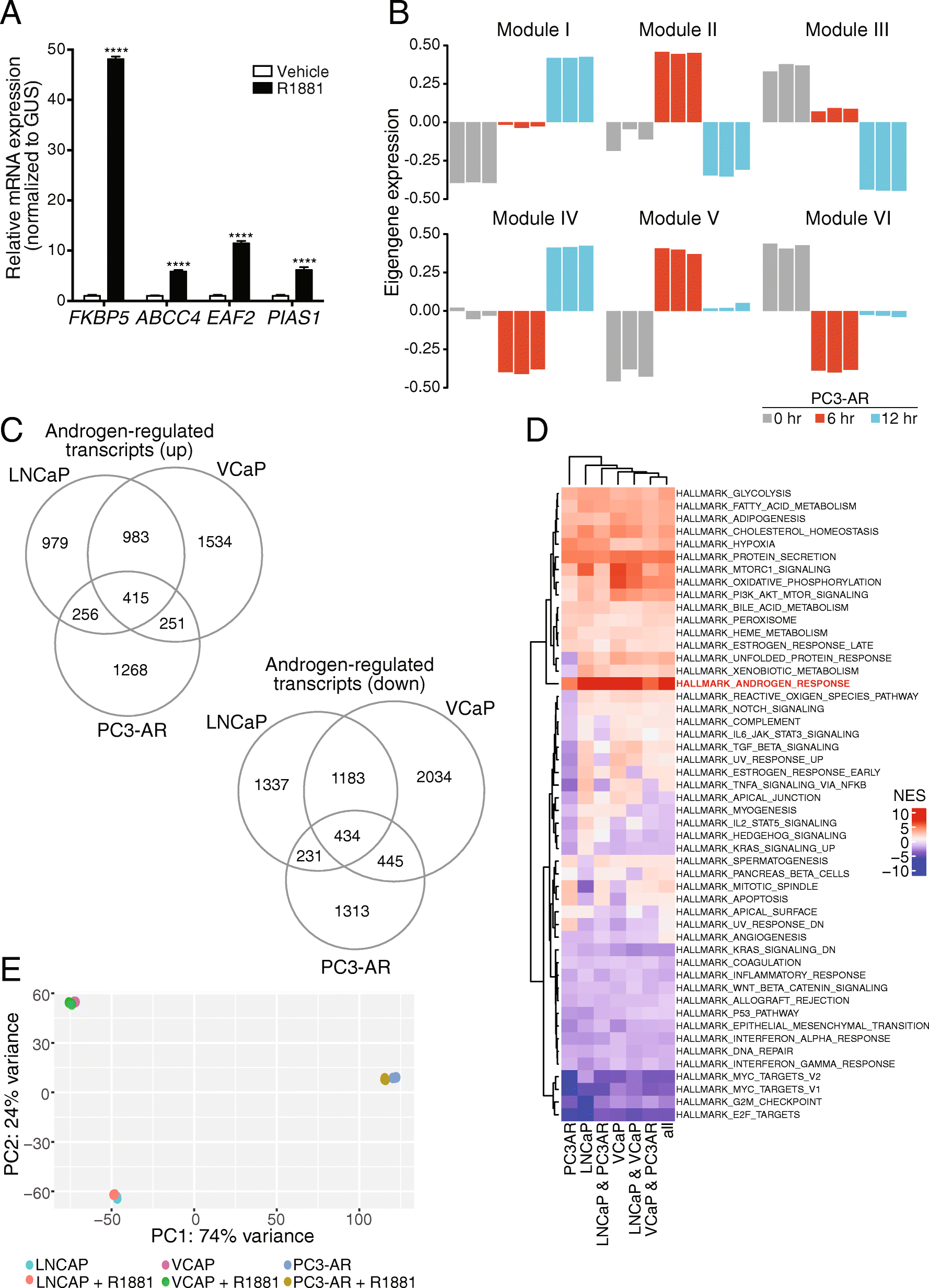 Genomic Analysis Of Dna Repair Genes And Androgen Signaling In Circuit Design Suite Screenshot 34 Fig 3