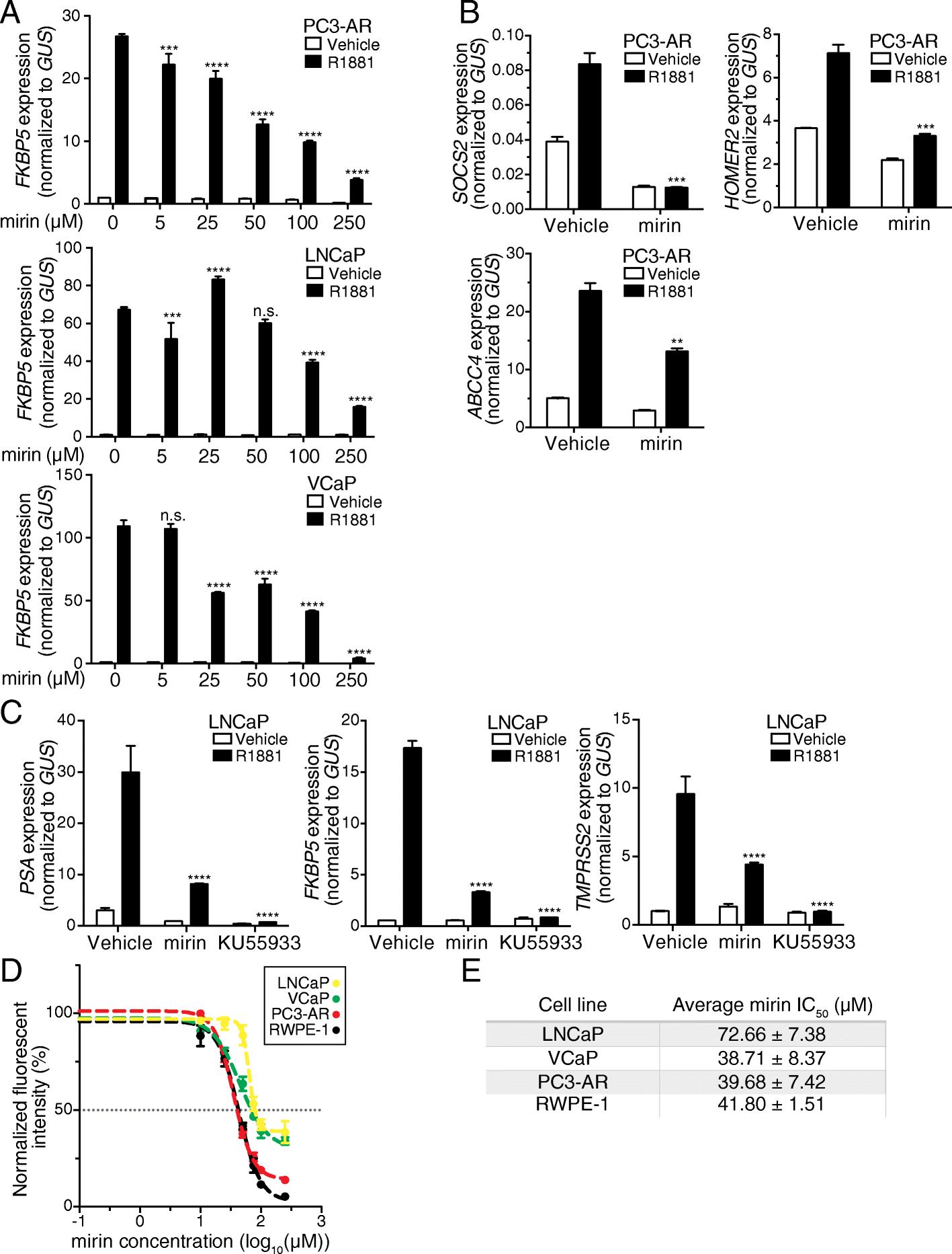 Genomic Analysis Of Dna Repair Genes And Androgen Signaling In Png 11kb 26987d1392783649detachedgaragenopowergaragewiringpng Fig 7
