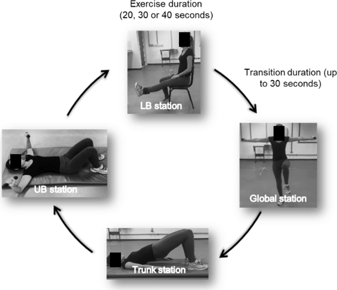 Influence Of A Periodized Circuit Training Protocol On Intermuscular
