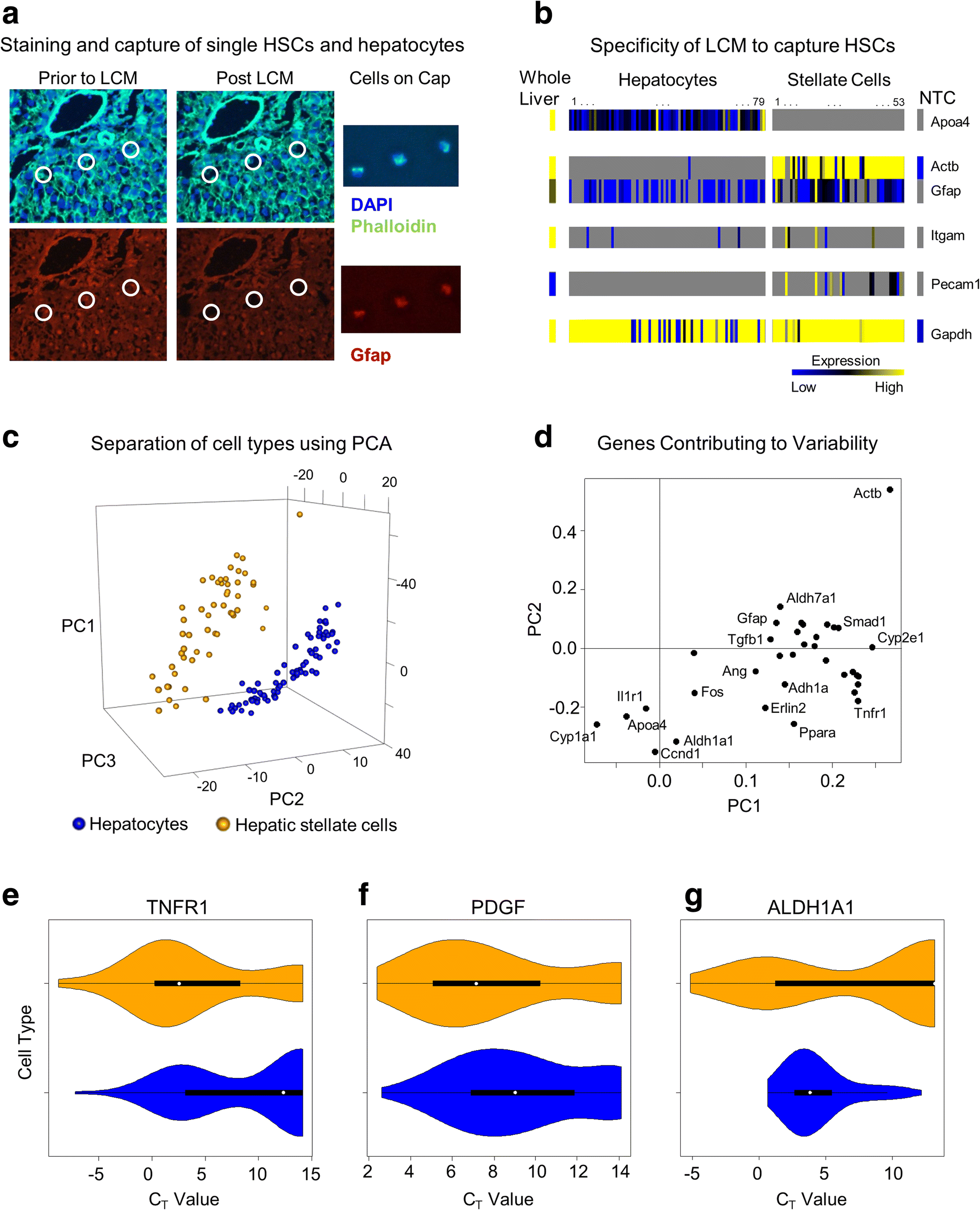 Cellular Network Modeling And Single Cell Gene Expression Analysis An Rc Integrator Is A Circuit That Approximates Themathematical Fig 4