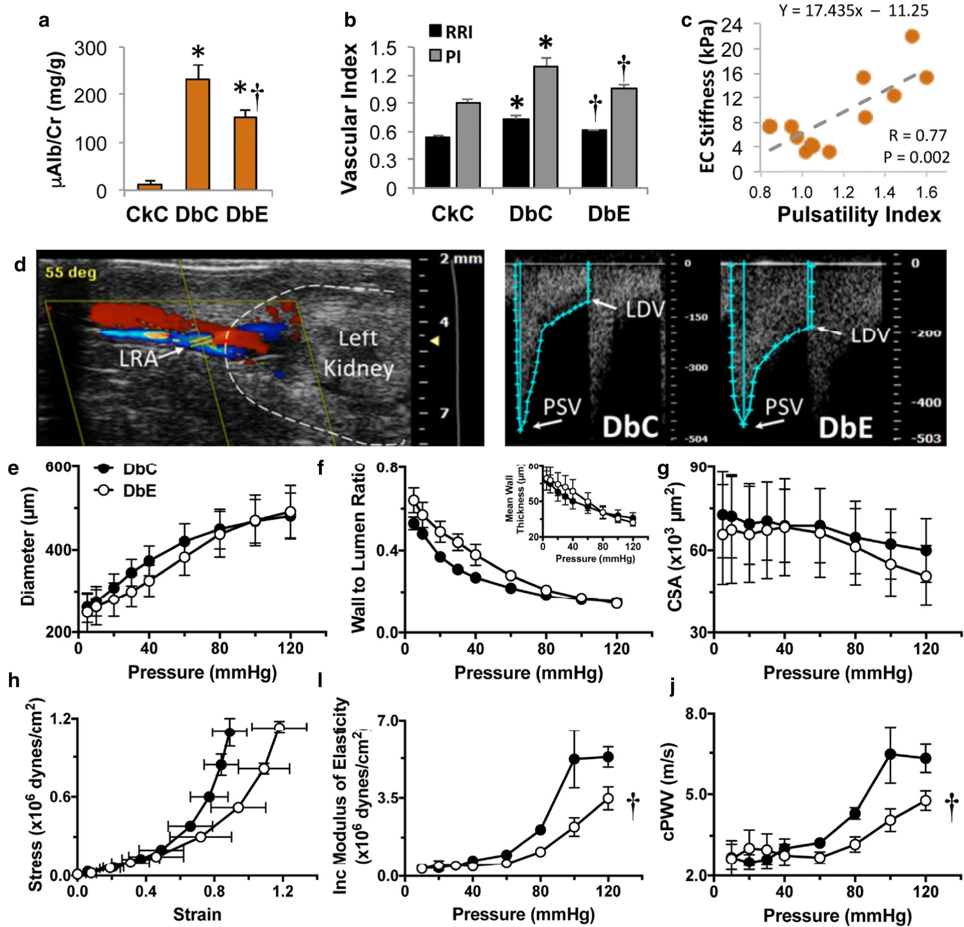 Glycemic Control By The Sglt2 Inhibitor Empagliflozin Decreases Herman Li Wiring Diagram Fig 2