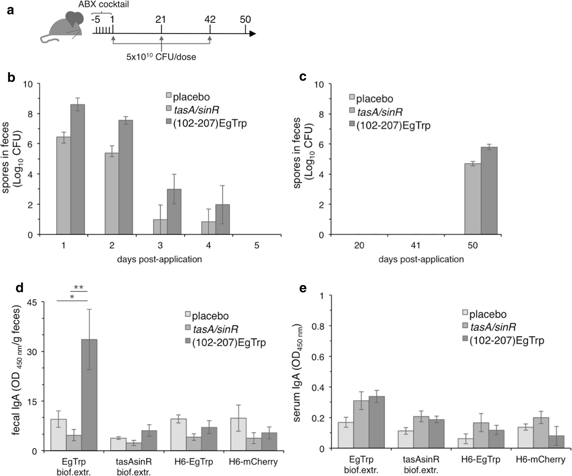 Mouse intestinal microbiota reduction favors local intestinal