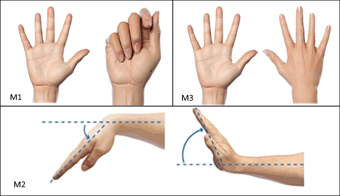 Comparison Of Eeg Measurement Of Upper Limb Movement In Motor