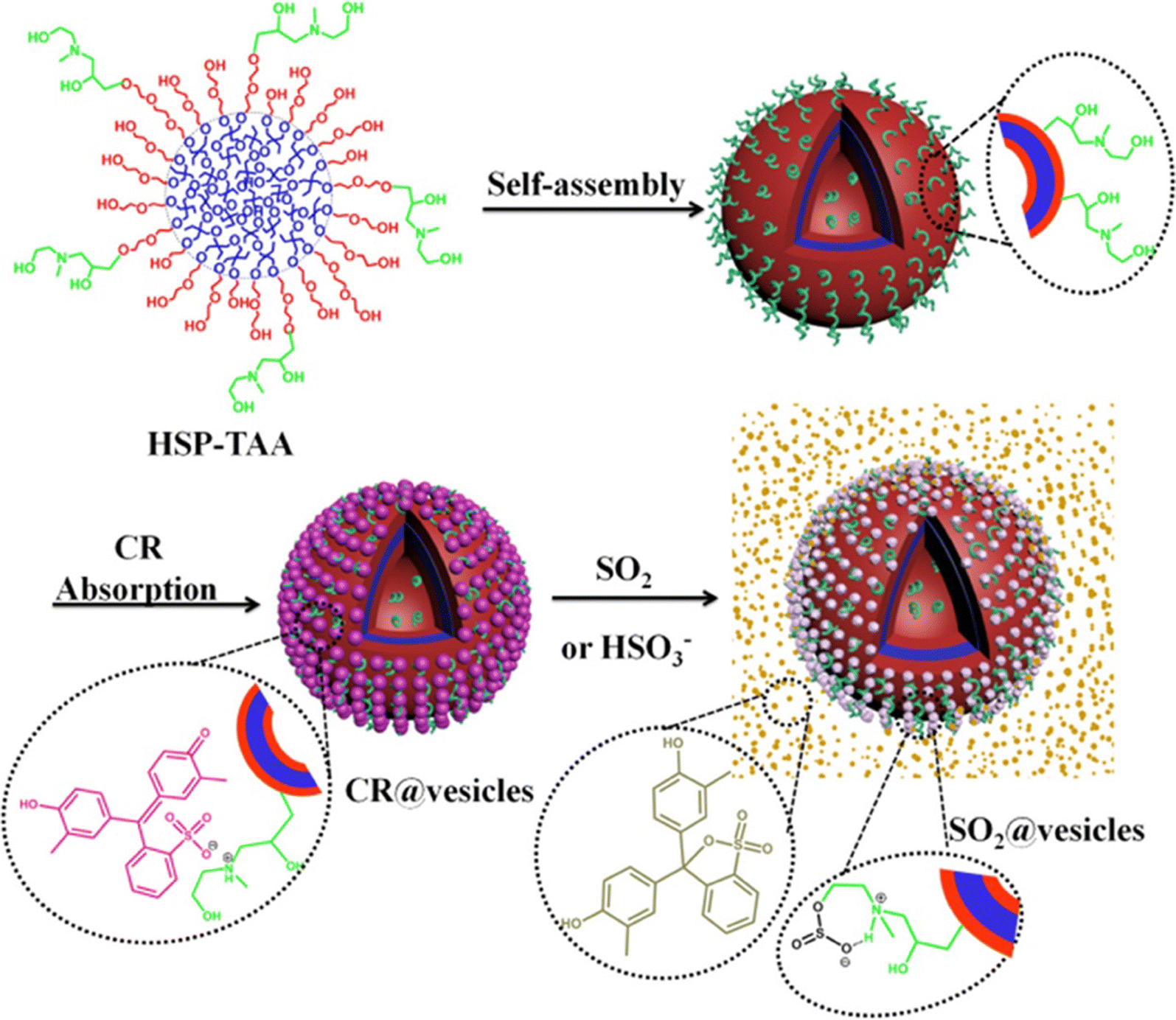 Nanosensors Based On Polymer Vesicles And Planar Membranes A Short Wiring Diagram For Steven Ma Fig 3
