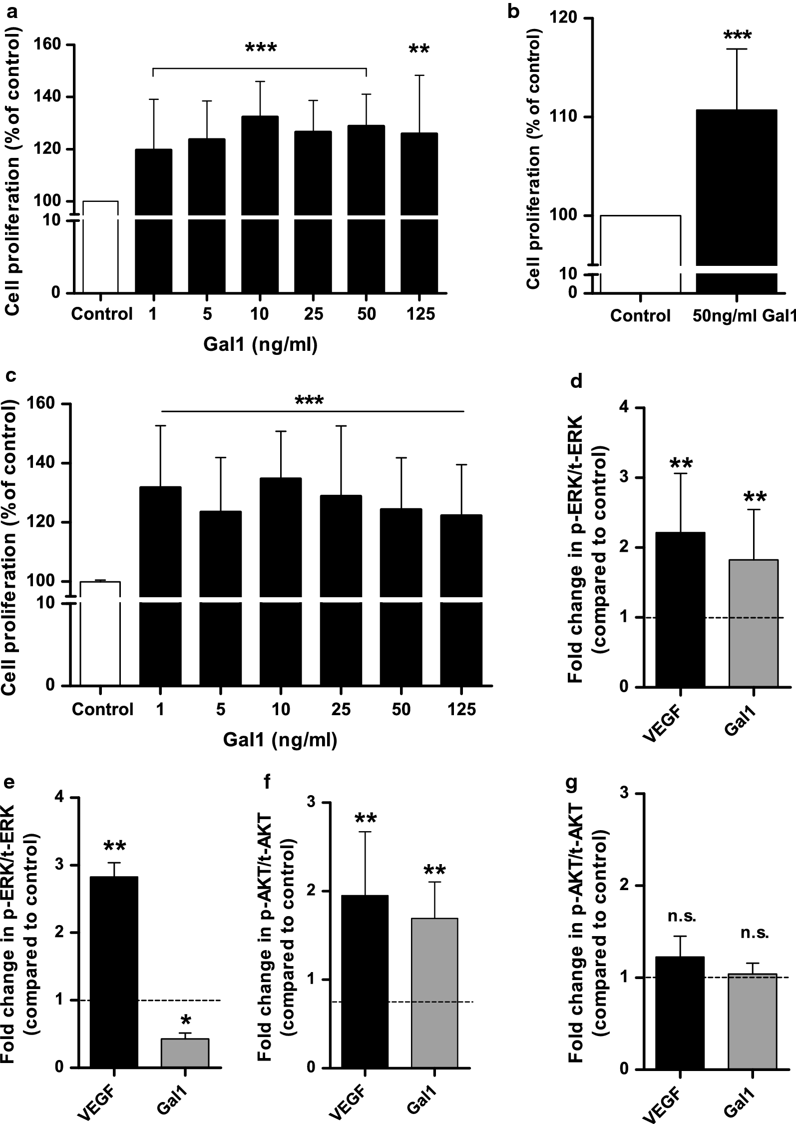 Cathepsin L-induced galectin-1 may act as a proangiogenic