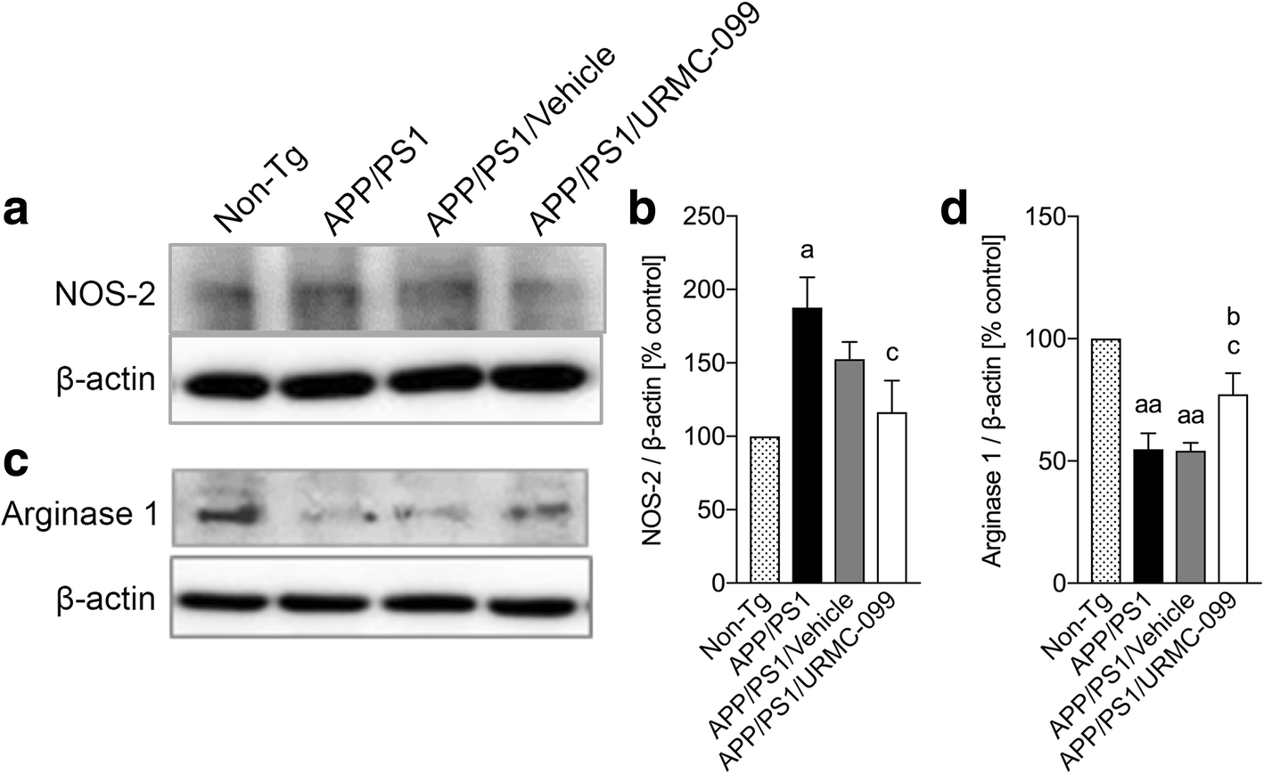 Urmc 099 Facilitates Amyloid Clearance In A Murine Model Of Reed Switches 2 1 What Is It Polarized And Memory Fig 6 Microglial M2 Phenotype Polarization Immunoblots Nos