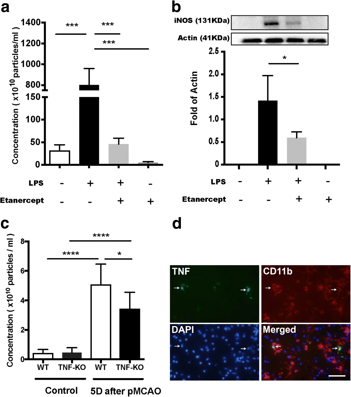 Inflammation Leads To Distinct Populations Of Extracellular Vesicles Friend Description Ev Electrical Wiring Diagrams Schematics And Fig 3