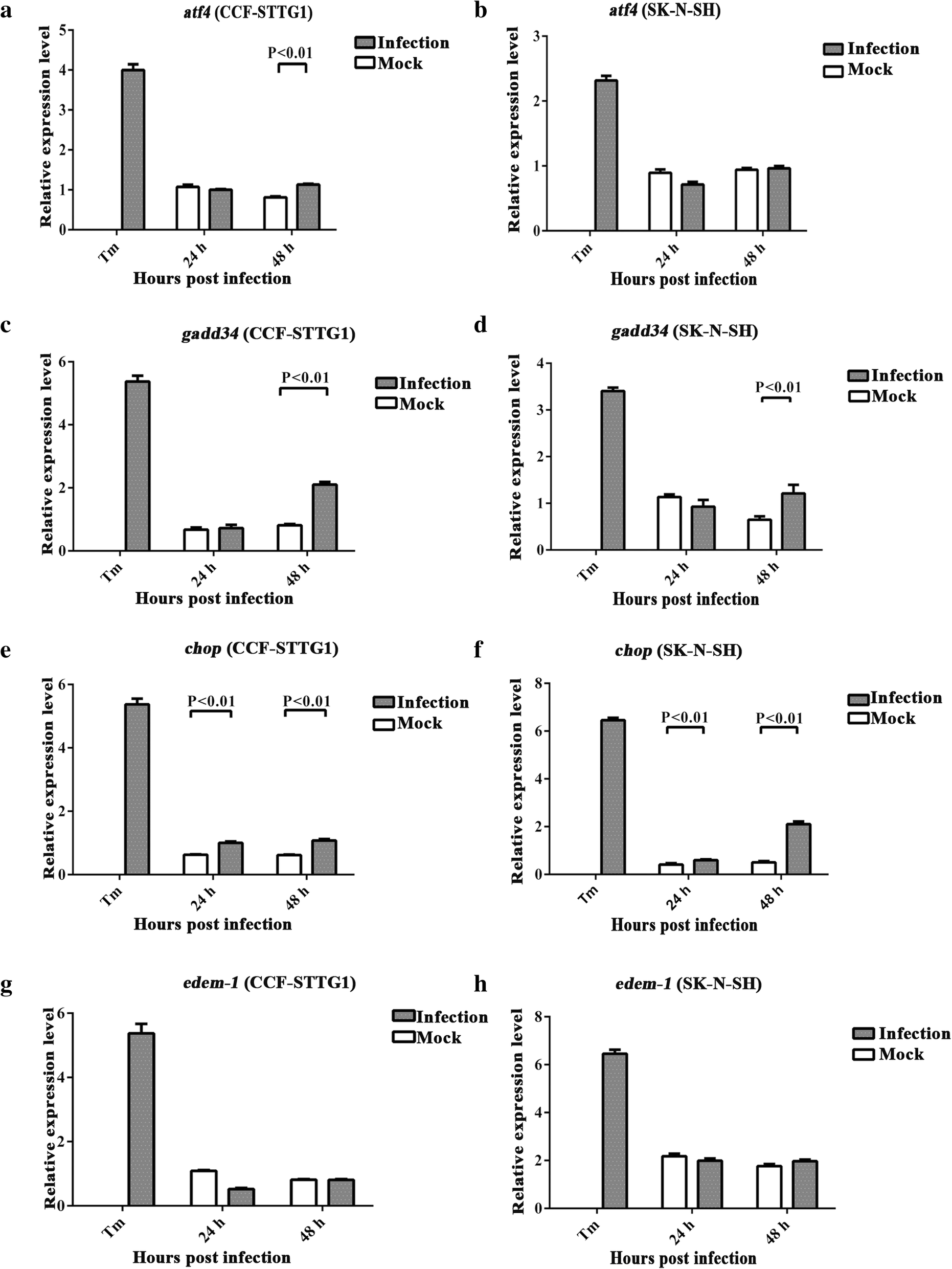 Zikv Infection Activates The Ire1 Xbp1 And Atf6 Pathways Of Unfolded Envelope Detector One Circuit A Week Fig 7