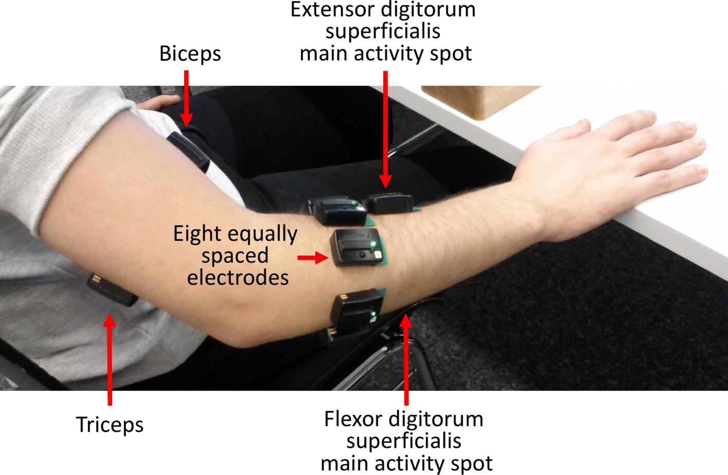A Quantitative Taxonomy Of Human Hand Grasps Journal Of