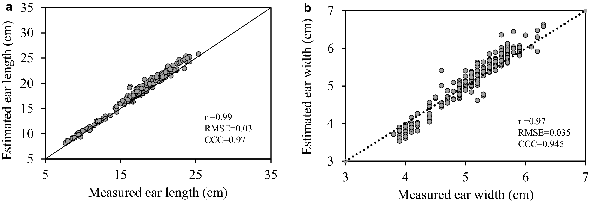High Throughput Method For Ear Phenotyping And Kernel Weight