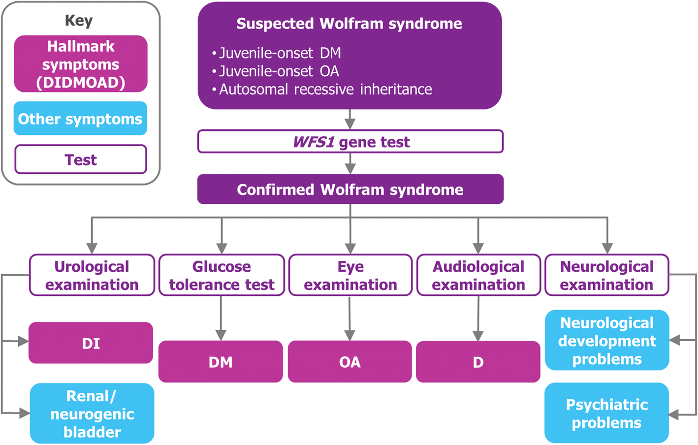 A Cost Of Illness Study Evaluating The Burden Of Wolfram Syndrome