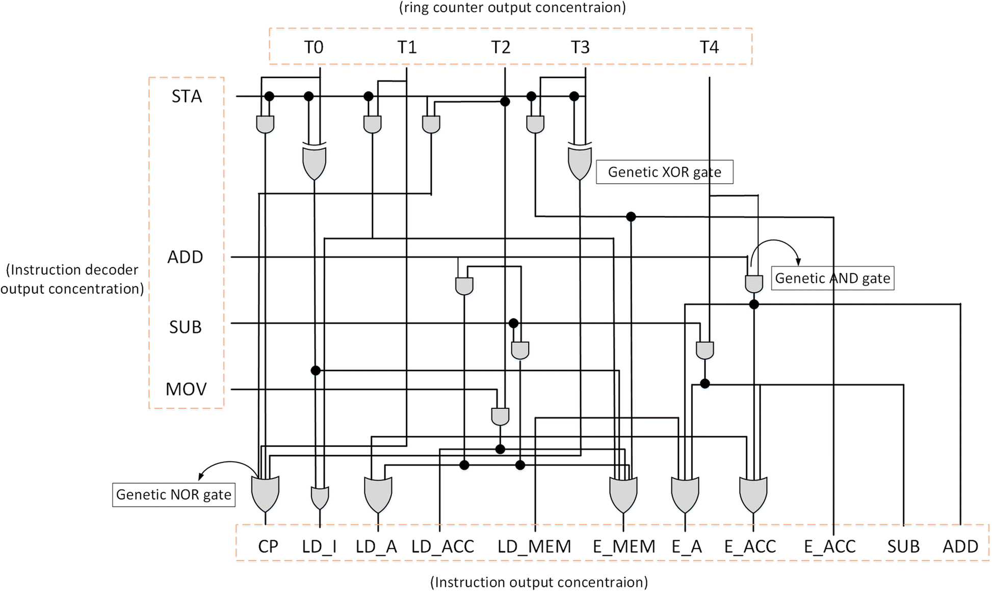 Synthesis Of Control Unit For Future Biocomputer Journal Logic Diagram Johnson Counter Fig 19