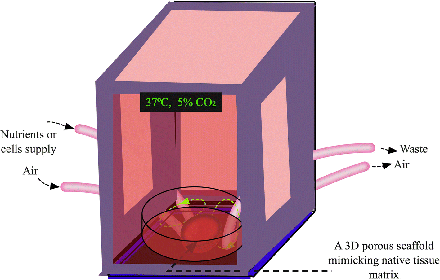 Native Mimicking In Vitro Microenvironment An Elusive And Seductive Tissue Air Galon Fig 4