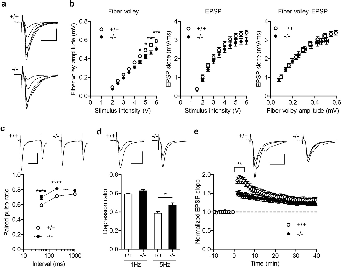 identify which of the stimulus modalities induced the largest amplitude receptor potential Small neural ensembles (30–40 neurons) of broadly tuned somatosensory neurons were able to identify correctly the location of a single tactile stimulus on a single trial, almost simultaneously.