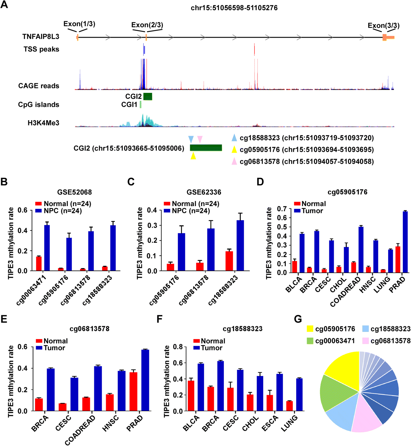 TIPE3 hypermethylation correlates with worse prognosis and promotes