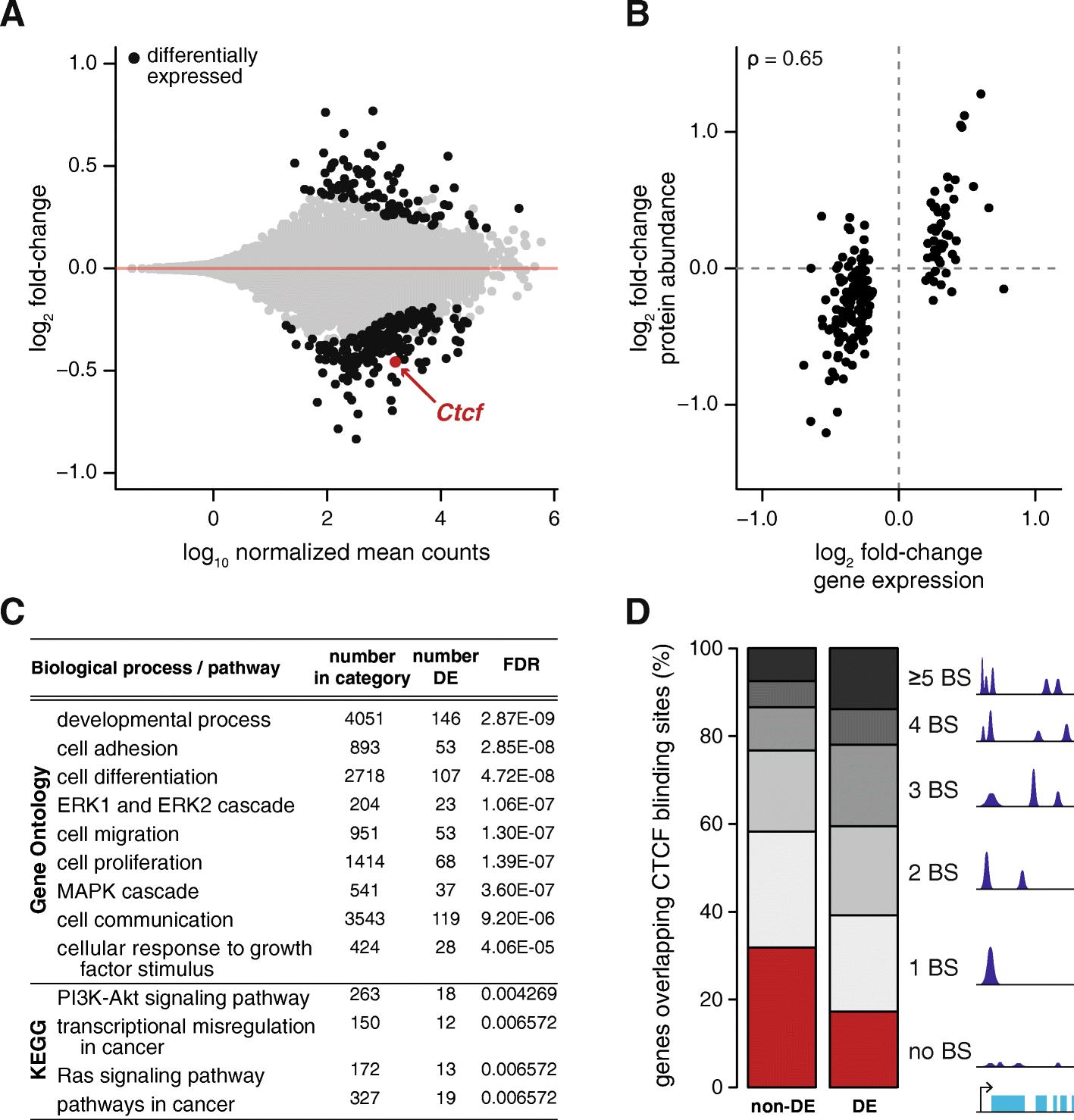 Ctcf Maintains Regulatory Homeostasis Of Cancer Pathways Genome Engine Diagram Additionally 2006 07 Honda Odyssey Left Driver Side Fig 4