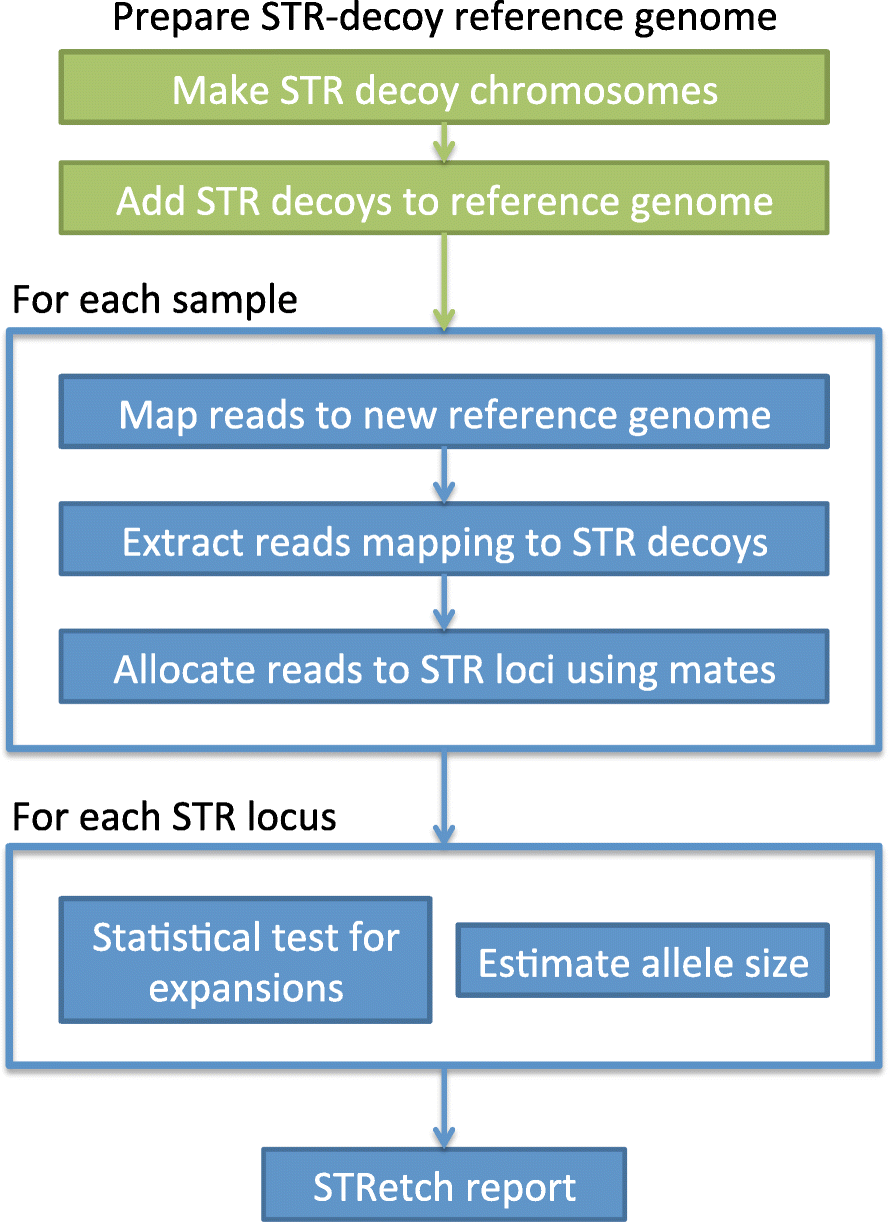stretch detecting and discovering pathogenic short tandem repeat