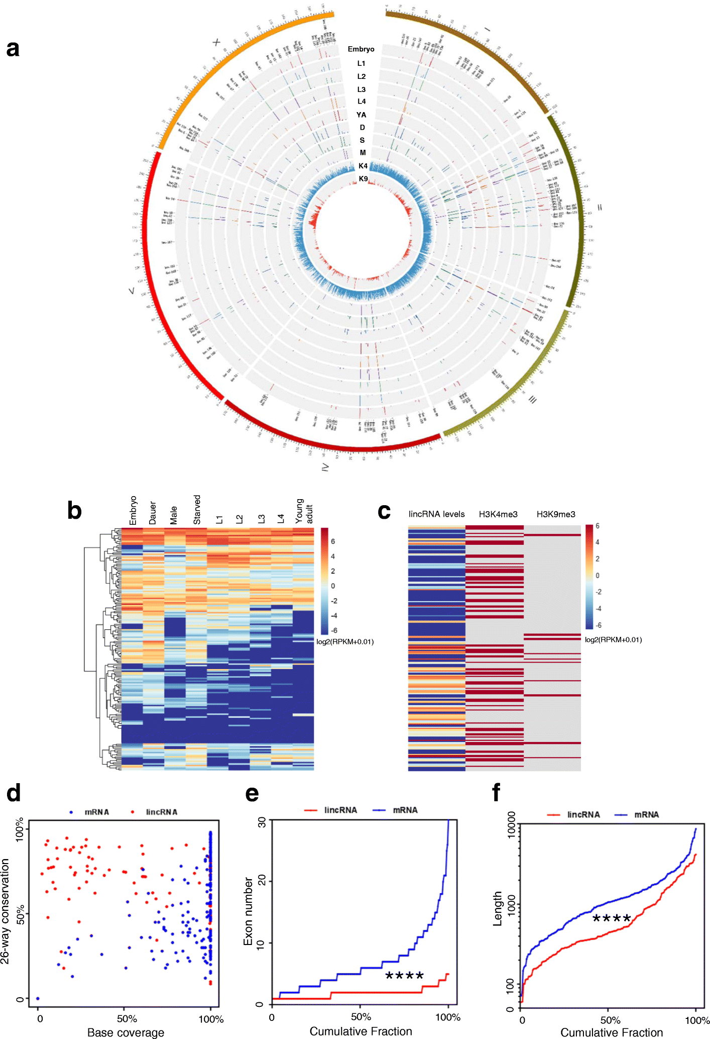 Systematic Evaluation Of C. Elegans LincRNAs With CRISPR