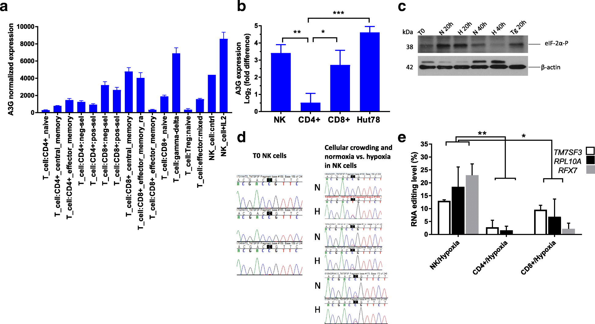Cell type-specific expression of APOBEC3G