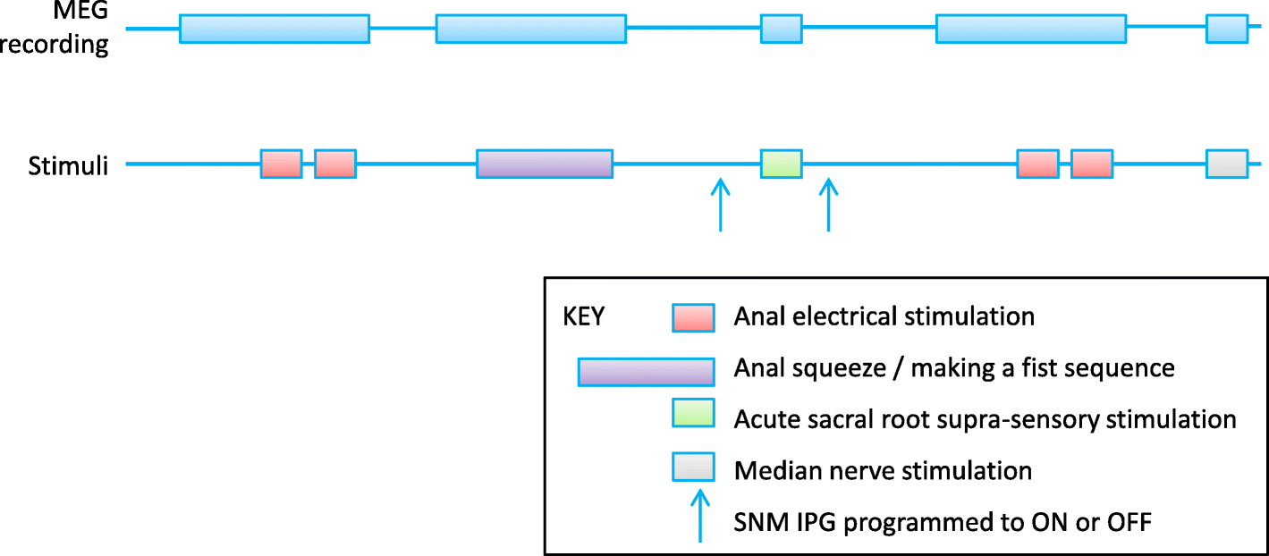 Efficacy And Mechanism Of Sub Sensory Sacral Optimised Electricity Bibs Teach Electric Circuits Fig 3