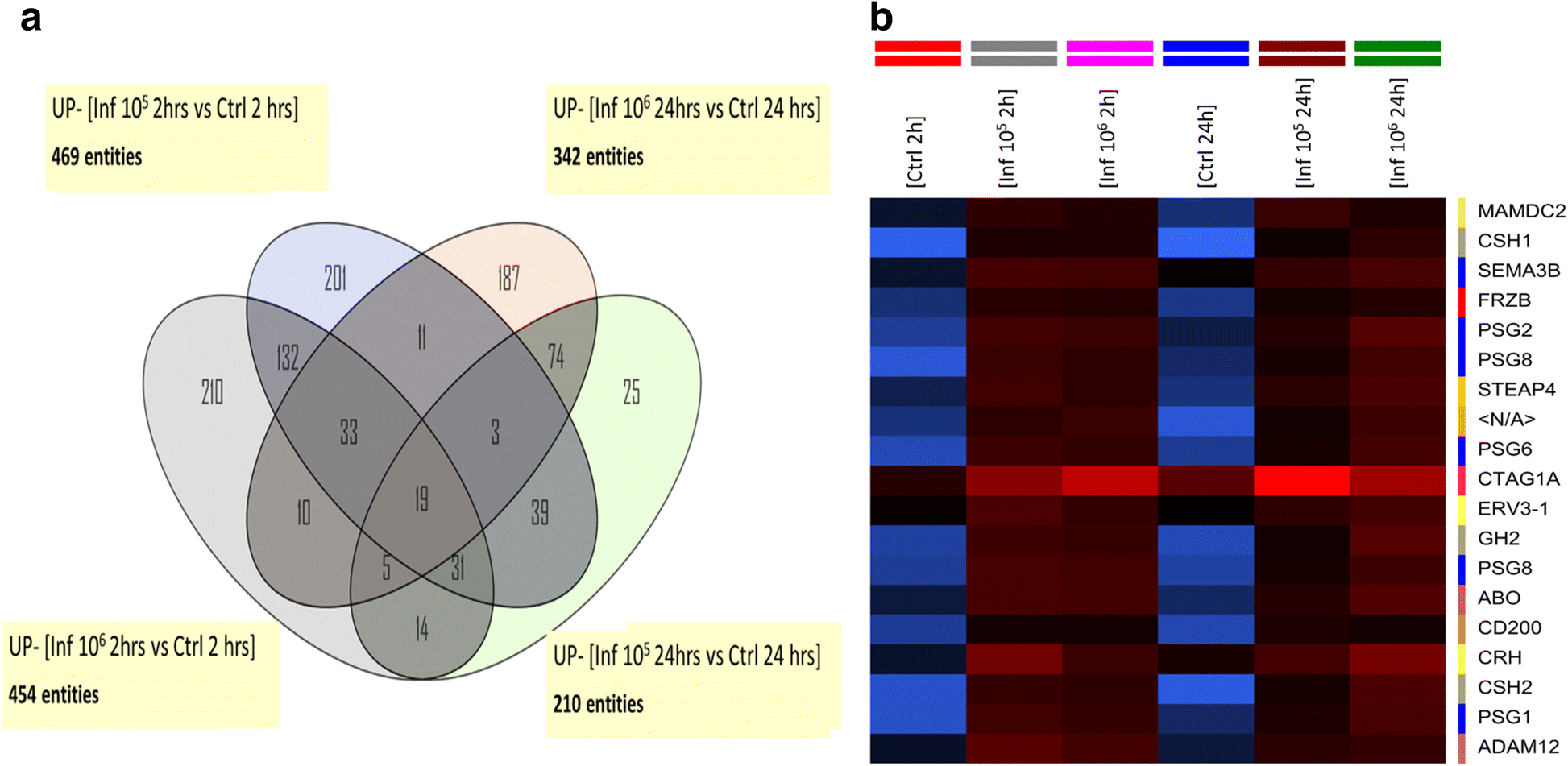 Host-parasite interaction: changes in human placental gene ...